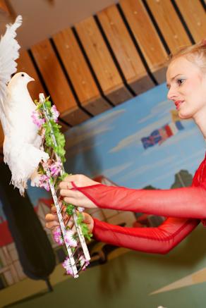 Номер с дрессированными голубями