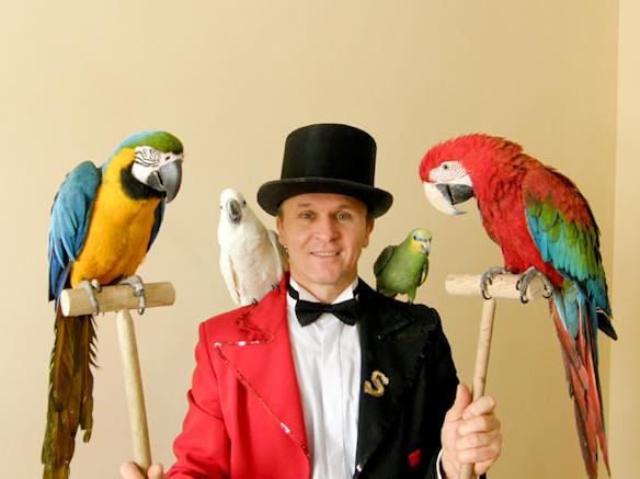 Номер с дрессированными попугаями