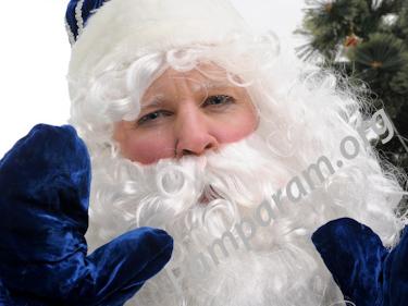 Дед Мороз в школу класс