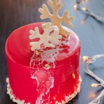 7312d9b89d3f6f9237fc220c5ea455a2--new-years-cake-entremet